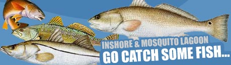 Photo of Inshore Fishing.