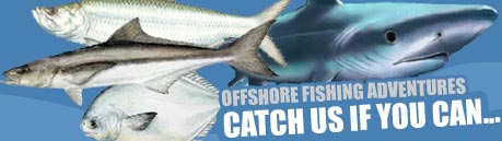 Photo of Offshore Fishing